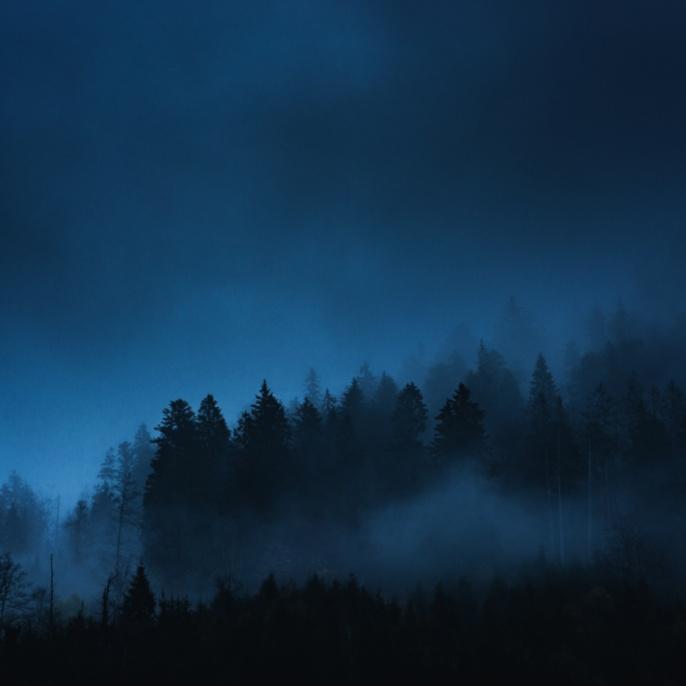 'Nebel, Allgäuer Alpen' von Alex Speer